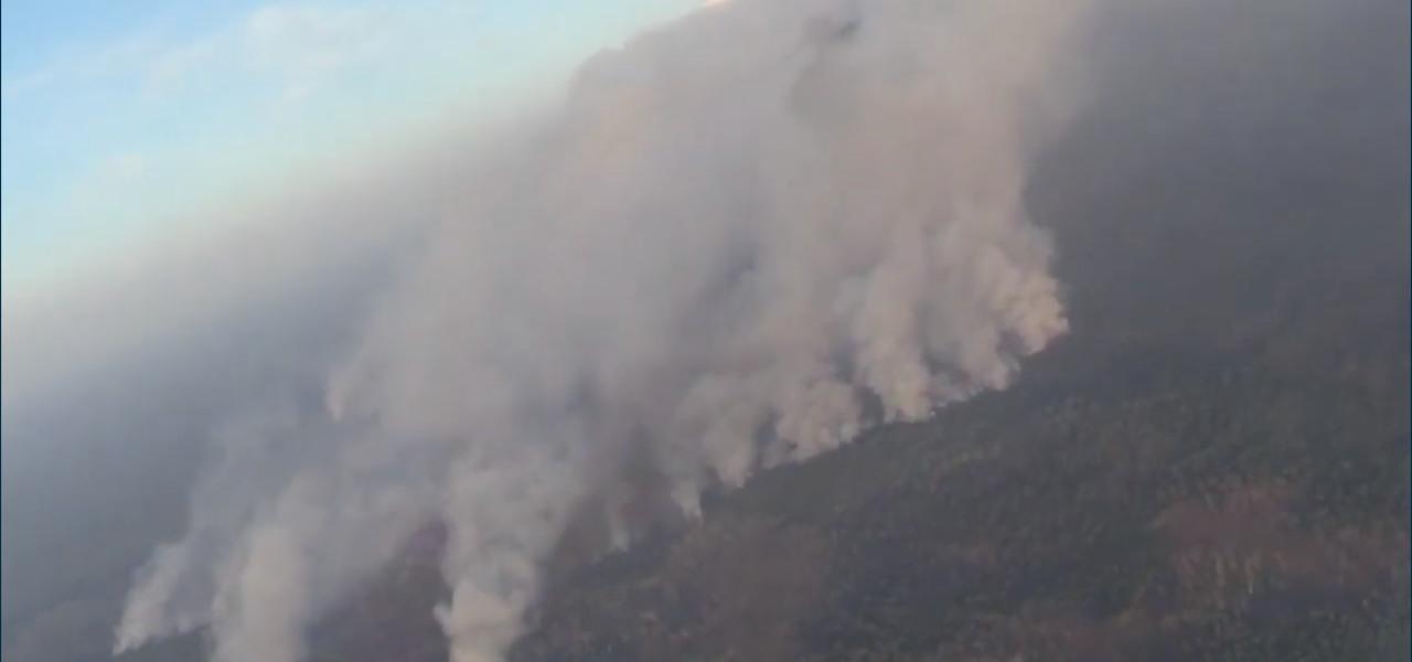 Siberia in fiamme: incendi fuori controllo/ Bruciano 4 milioni di ettari ...