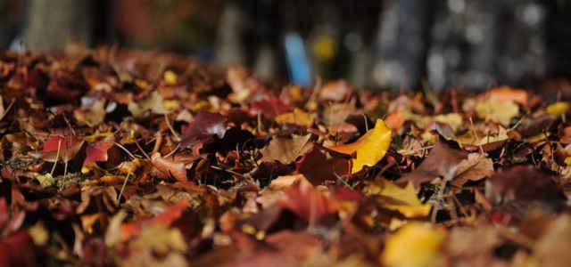 settembre autunno pixabay 640x300