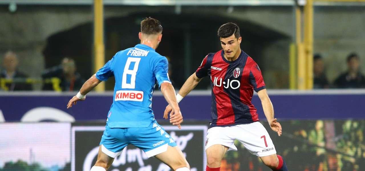 Bologna Napoli