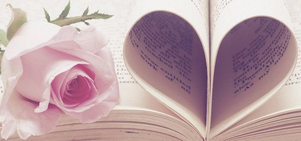 san valentino libro rosa pixabay