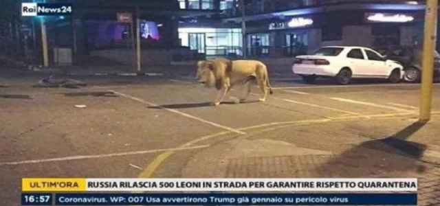 putin leoni coronavirus fake news