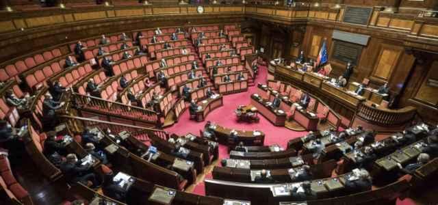 rissa in senato