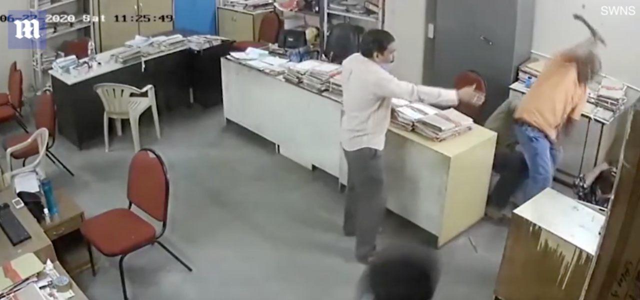 india picchia collega