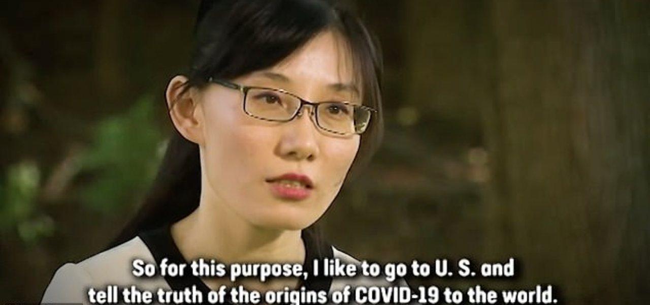 li meng yan virologa hong kong