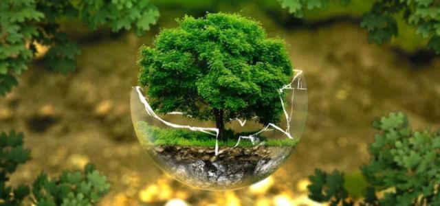giornata mondiale ambiente pixabay 640x300