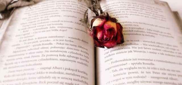 libro rosa pixabay 640x300