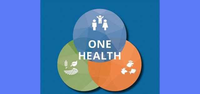 One Health aper 640x300