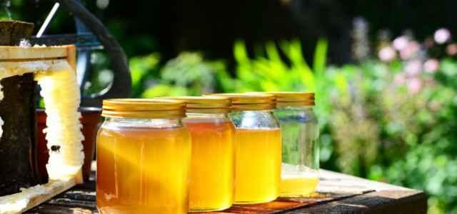 agricoltura miele bio retesociale 1 lapresse1280 640x300