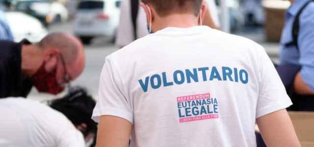 referendum eutanasia