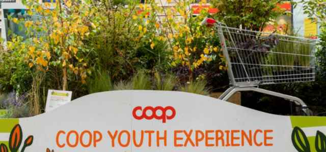 coop youth experience cs 2021 640x300